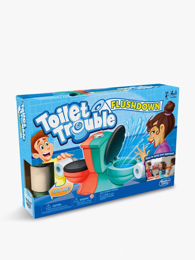 Toilet Trouble Flushdown