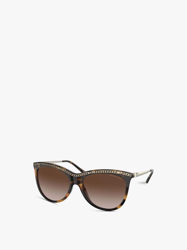 Metal Detail Acetate Sunglasses