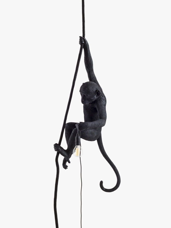 Outdoor Monkey Lamp With Rope