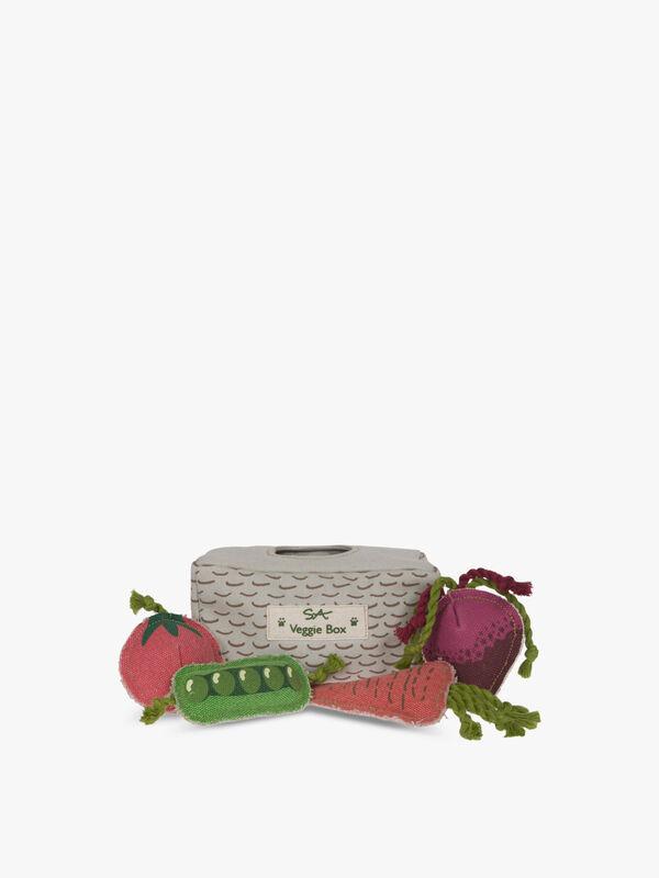 Veggie Box Dog Toys