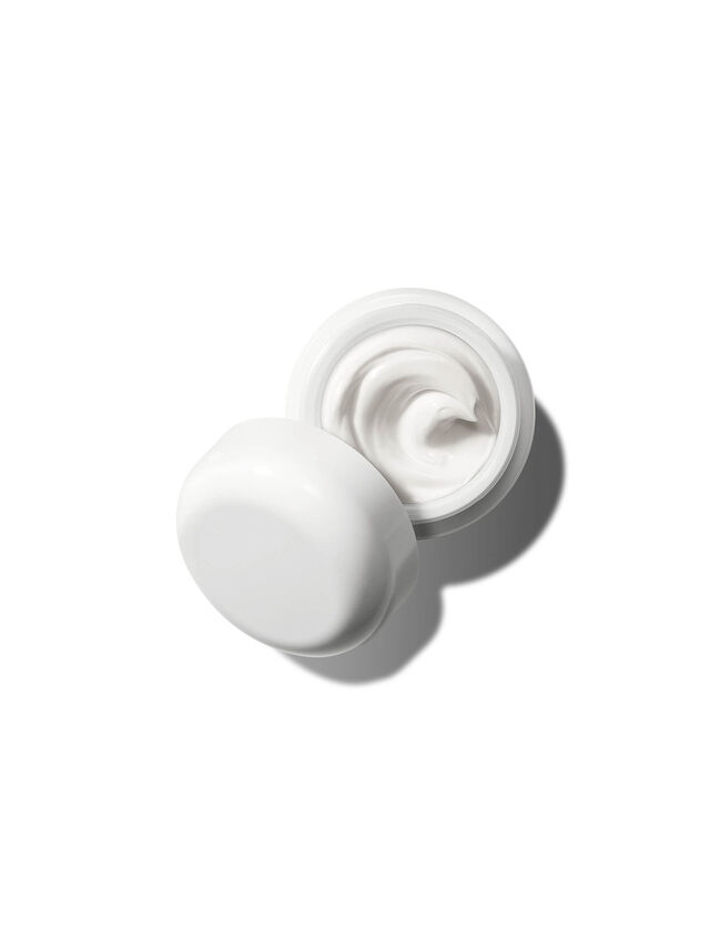 The Moisturizing Cream 60 ml