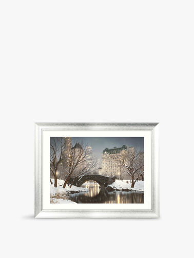 Central Park Winter Framed Print MP58
