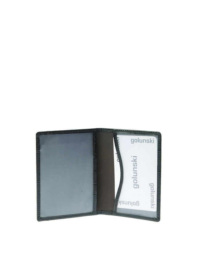 Travel pass holder