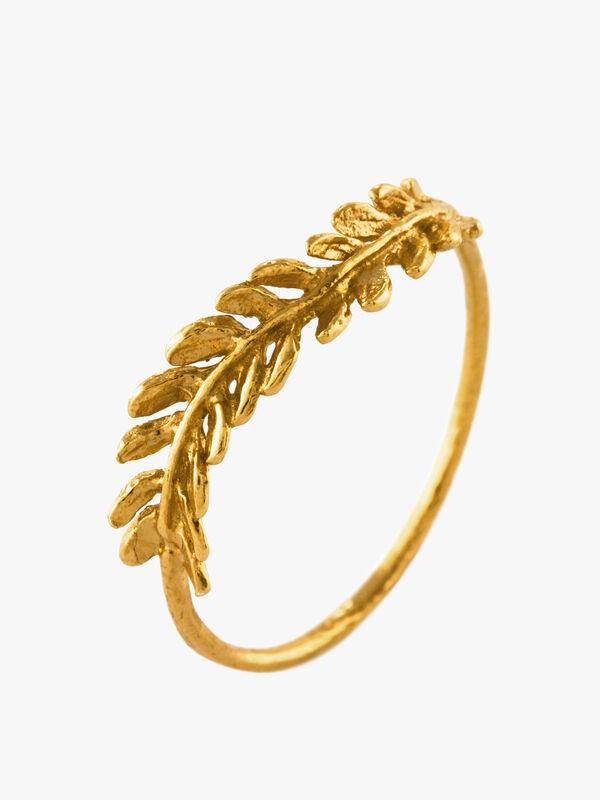 Tropical-Fern-Ring-0001053364