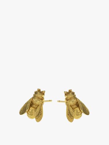 Honey Bee Stud