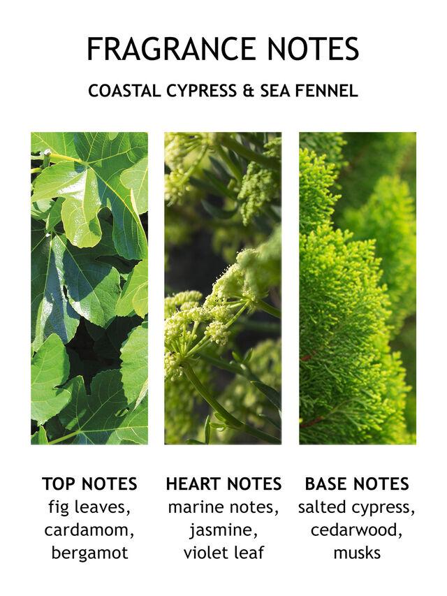 Coastal Cypress & Sea Fennel Bath & Shower Gel