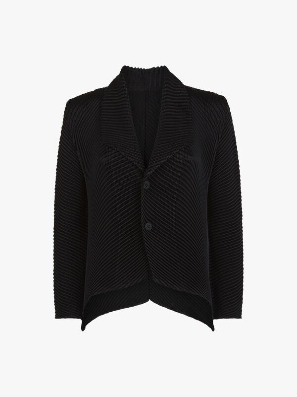 Glow Pleats Jacket