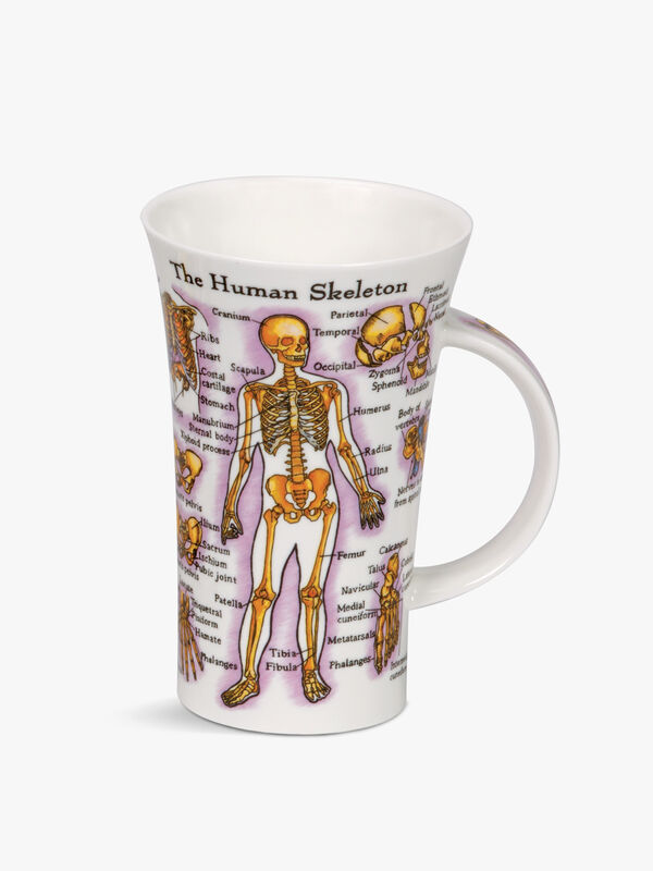Glencoe Human Body Mug