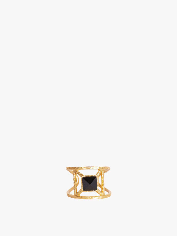 Annix Ring