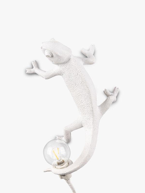 Chameleon Lamp Going Up