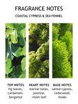 Coastal Cypress & Sea Fennel Body Lotion