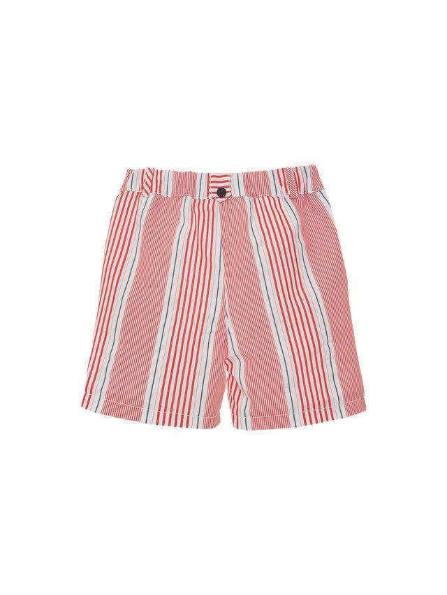 Cruise Stripe Shorts