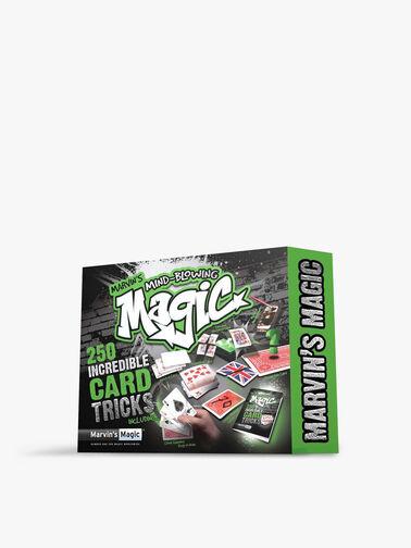 Mind Blowing Magic - 250 Card Tricks