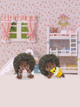 Hedgehog Twins