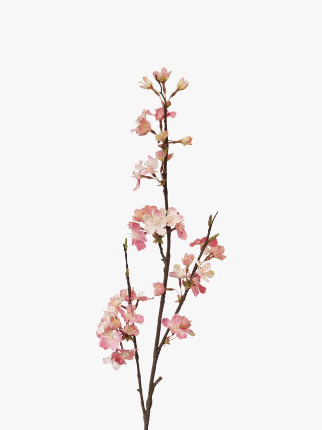 Cherry Blossom Floral Stem