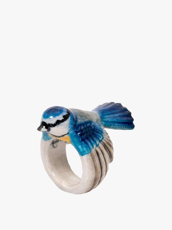 Blue Tit Ring
