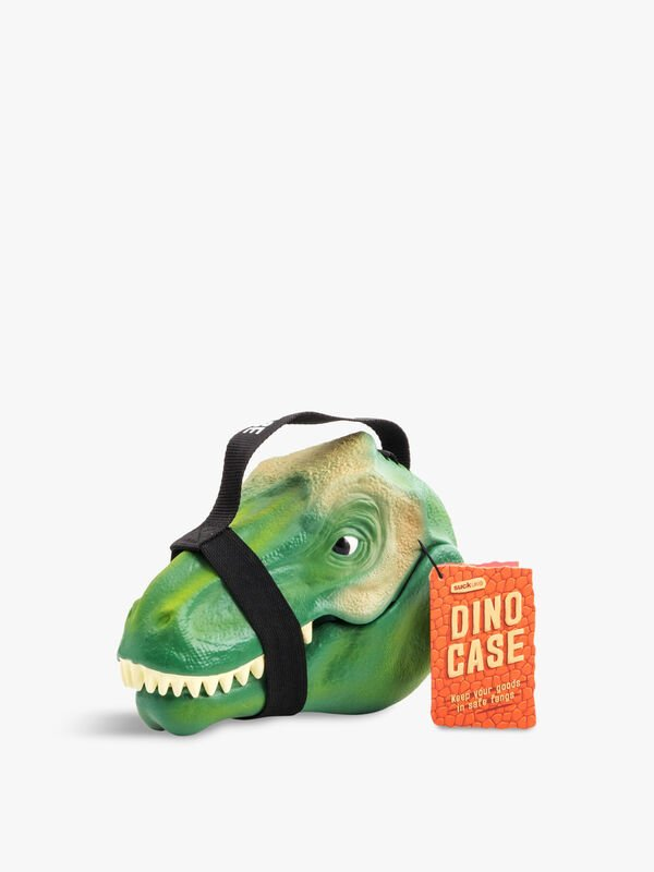 Dinosaur Lunch Box