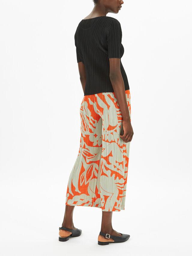 Basic Short Sleeve Top