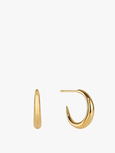 Small Graduated Hoops