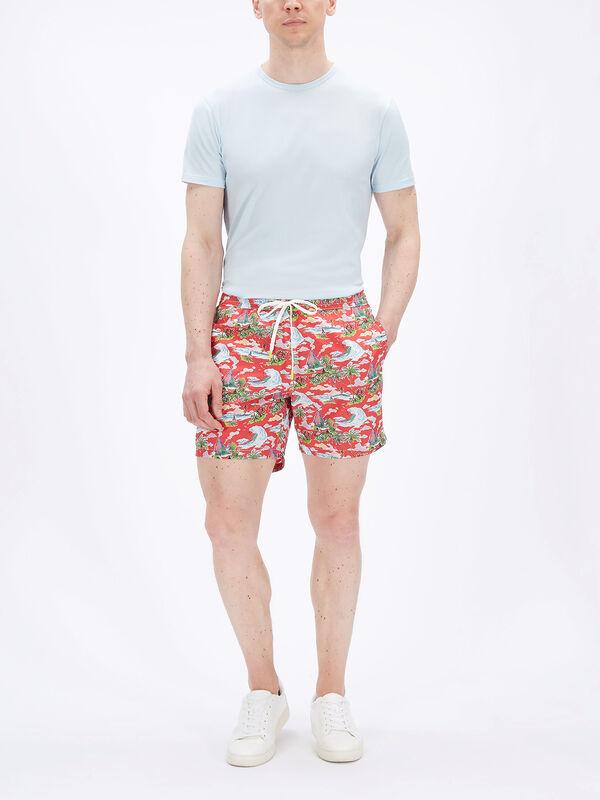 Surfer Print Swim Shorts