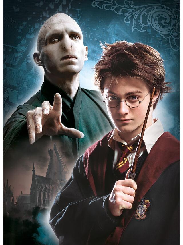 Harry Potter 3 x 1000pc Multi Puzzle Box