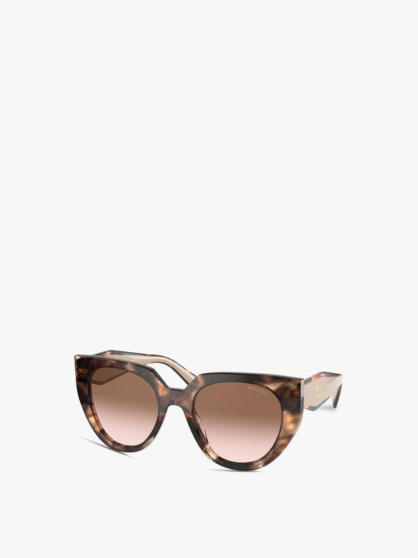 Round Cat Eye Sunglasses