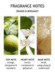 Orange & Bergamot Eau de Toilette 100 ml
