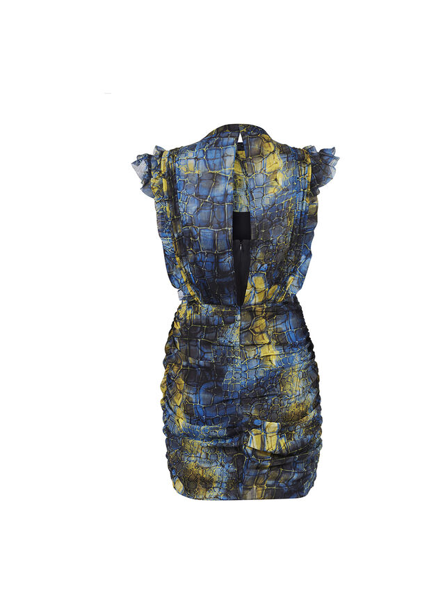 Hali Mirus Dress