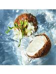 Aqua Allegoria Coconut Fizz Eau de Toilette 75 ml