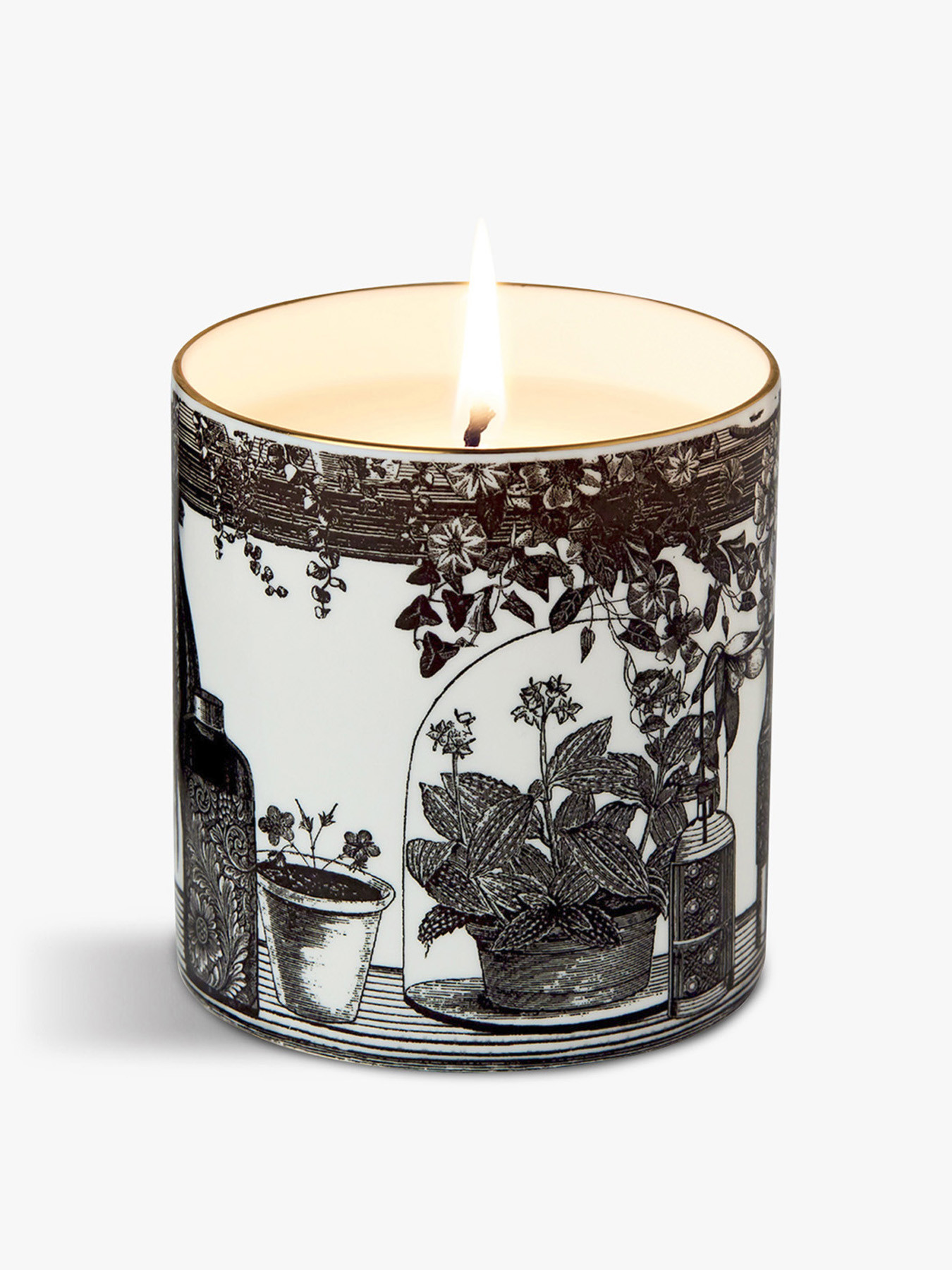 Chase And Wonder The Botanist Fine China Scented Candle Candles Fenwick